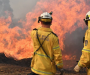 Firefighters in 'uncharted territory' as bushfires blaze across NSW